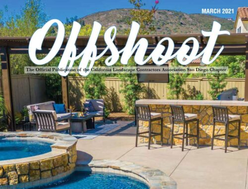 Nature Designs Landscaping Featured On Cover Of Offshoot Magazine